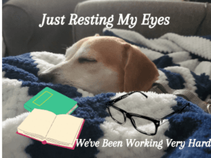 chance-sleeping-with-books-glasses