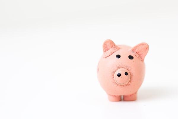 pink-piggy-bank