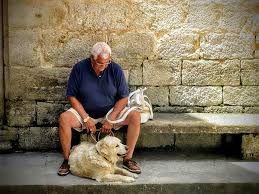 retiree-with-dog-sitting-on-curb