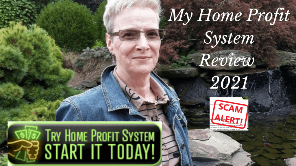 Home-profit-system